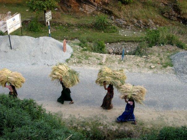 Field research in Uttarakhand