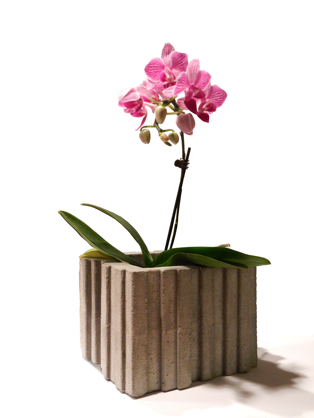 "Concrete Planter_ 5""x5"""