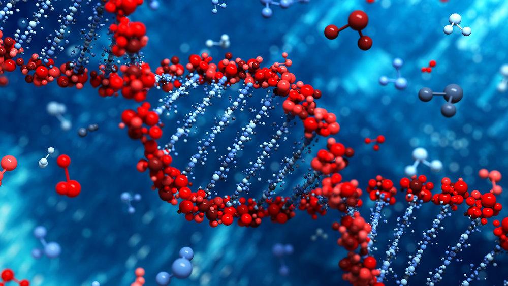 DNA Banner 3.jpg