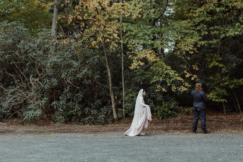 enowen-wedding-photography-linville-nc-carson-john-elopement (34 of 109).jpg