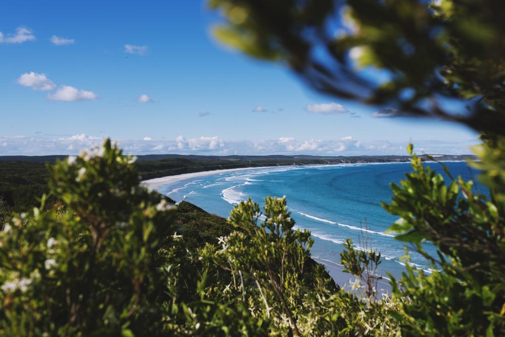 port-fairy-victoria-australia-abalone