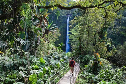 Check out  Big Island Hikes  for the best Beaches. Volcanoes. Rainforests. Deserts. Lava Tubes. The Ultimate Online Guidebook for Big Island Adventure.