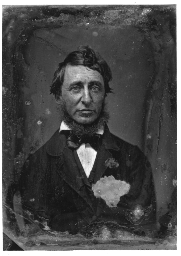 Henry David Thoreau in a daguerreotype taken in 1856 by Benjamin D. Maxham.Credit Benjamin D. Maxham/Thoreau Society and the Walden Woods Project ( NY Times )