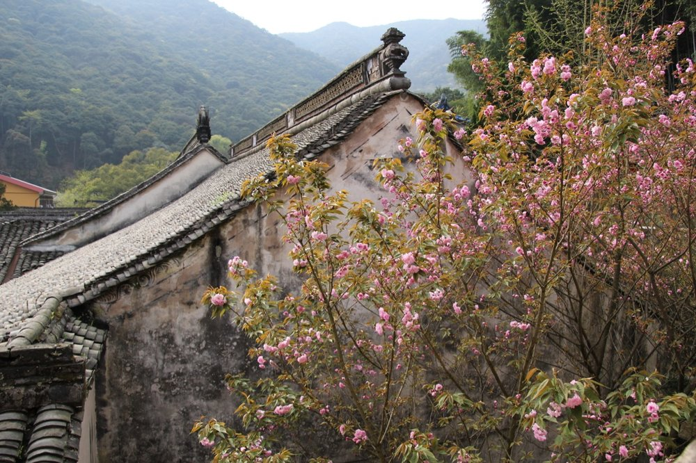 A view of the temple buildings and surrounding mountains from atop Tiantong Temple