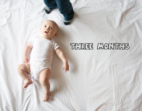 Freddie 3 months