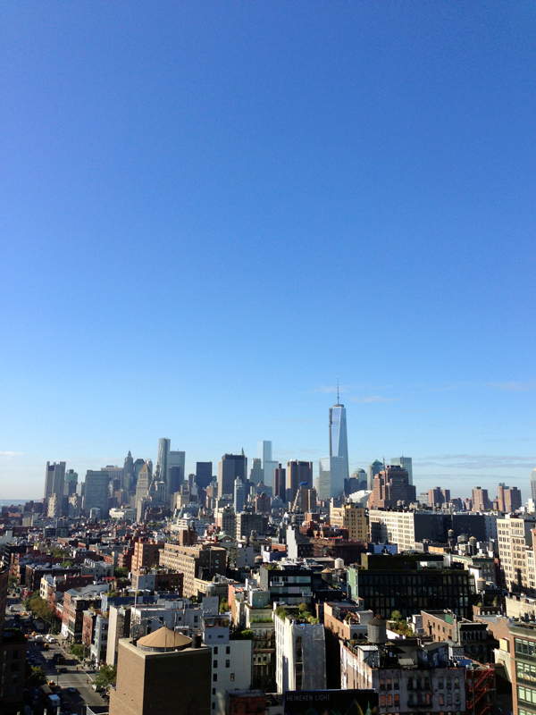 Senn & Sons - view from roof of The Standard NYC