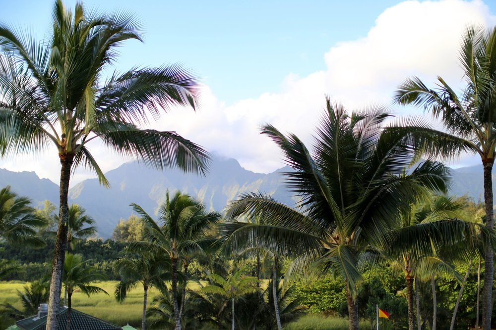 Views from St Regis Princeville Hotel Grounds