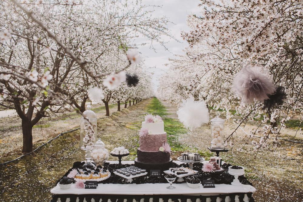 black and lavender wedding color ideas photo
