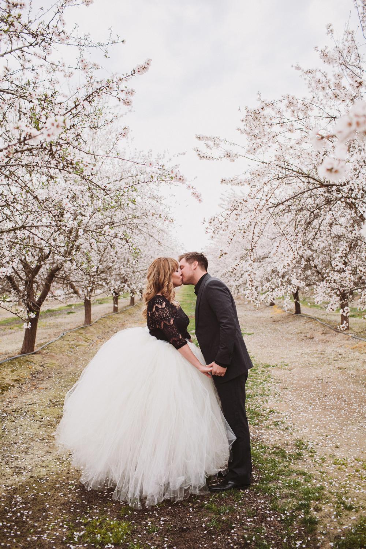 almond orchard wedding photographer