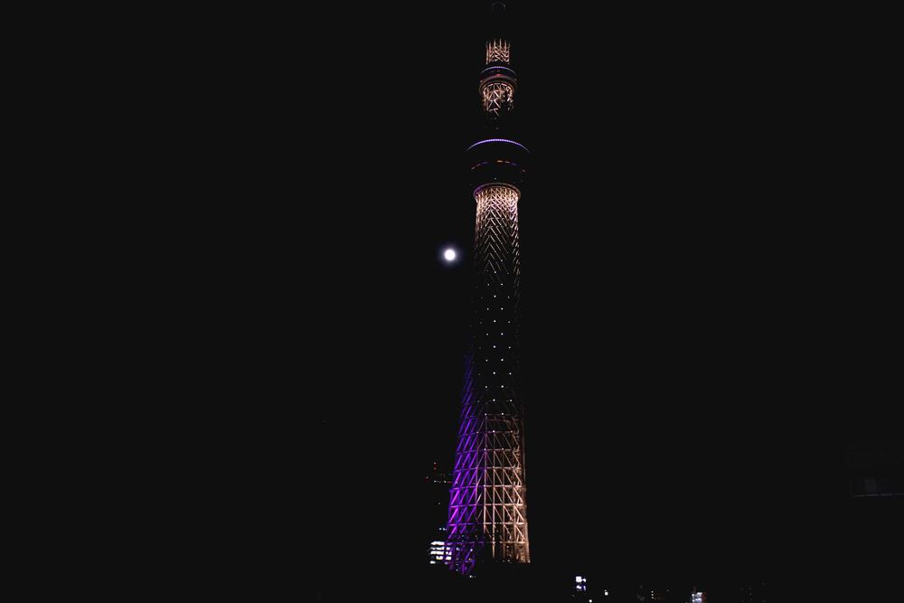 Japan_14.jpg