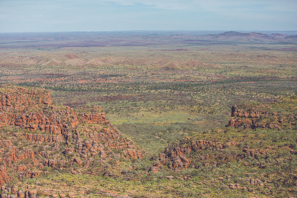 Purnululu from above   Kija & Jaru country, Purnululu National Park, NT, 2016