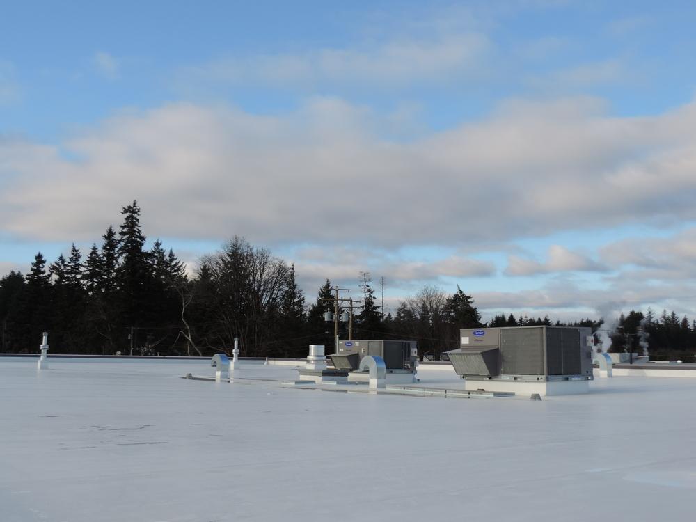 CR H - TPO Roof.jpg