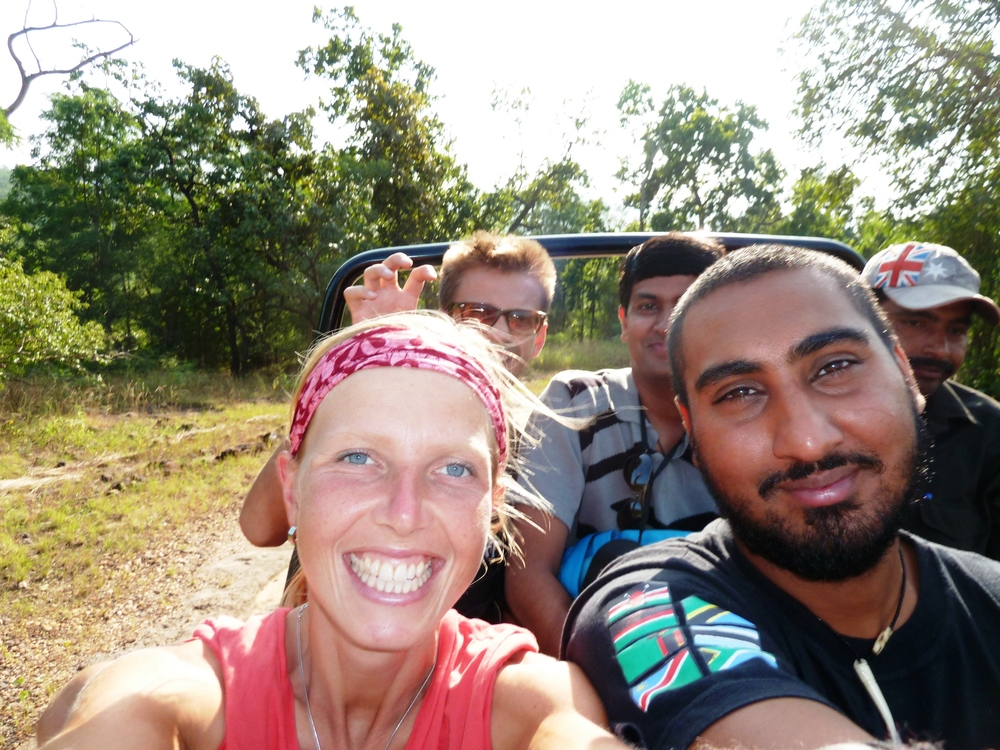On a safari for the endangered Bengal Tiger