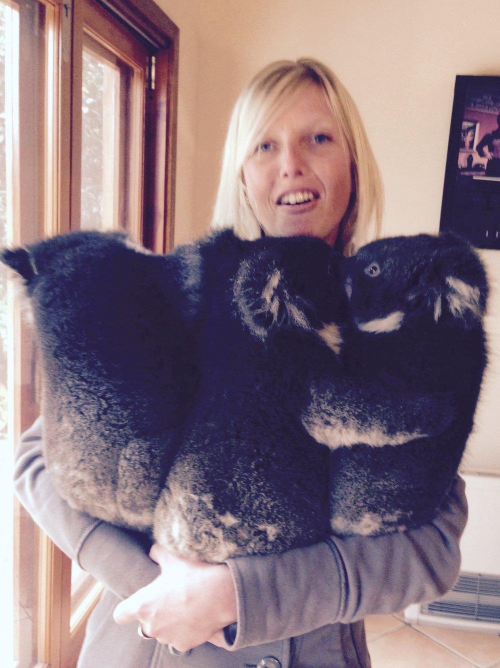 Three koala hugs are better than one.