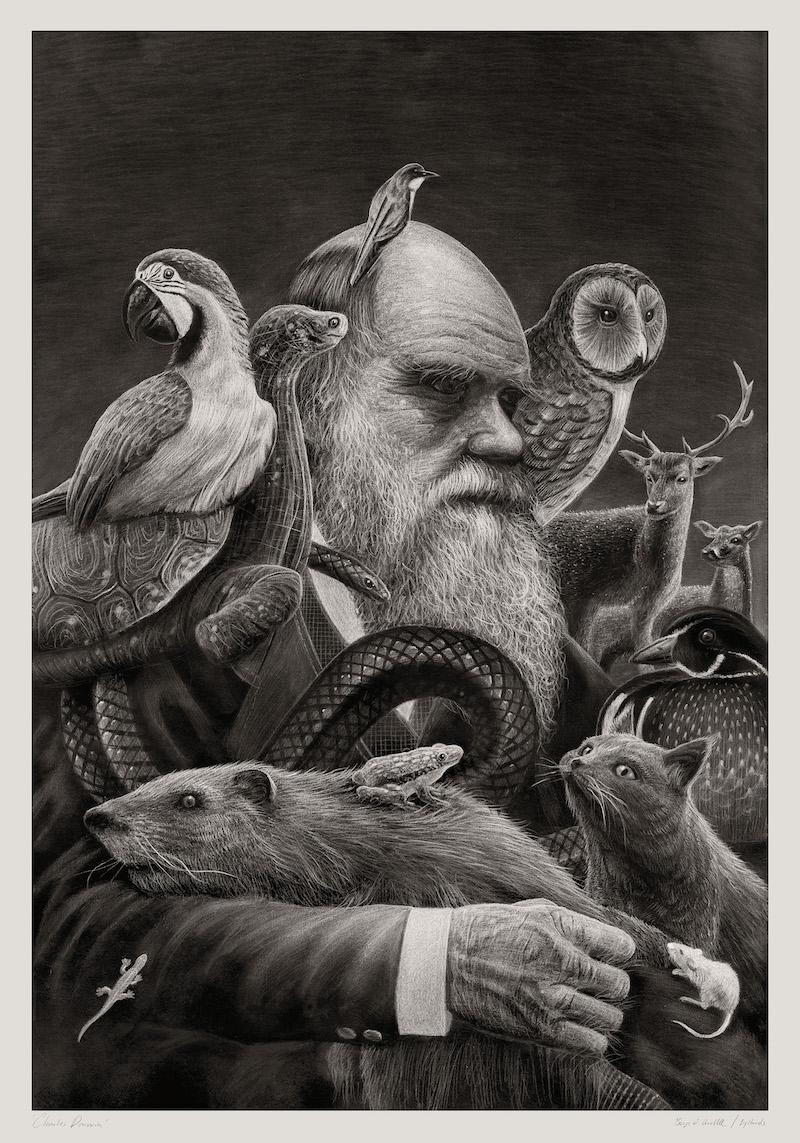Darwinism – Børge Bredenbekk