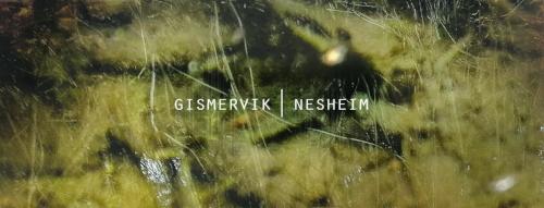 Gismervik/Nesheim er en ny duo med den noe uvanlige besetningen cello og vibrafon. Musikken består av komposisjoner med mye rom for improvisasjon, og det låter nært og lavmælt CC: 50 kr