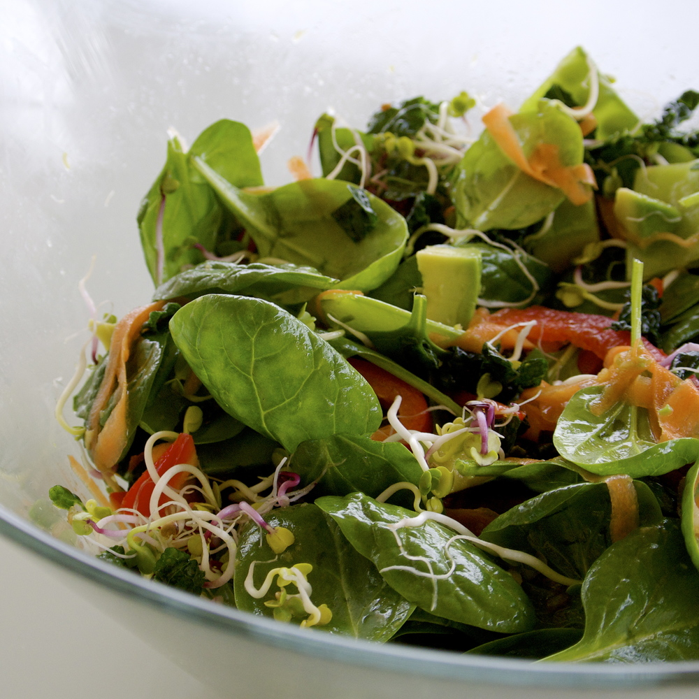 Raw massaged kale, baby spinach, and sprouts salad with almond butter ginger lime vinaigrette.