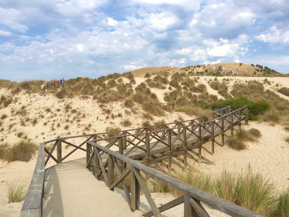 Dunes, Playa Cala de Sa Mesquida