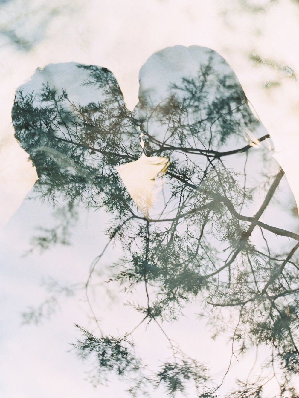 Love by Serena Wedding Photography Charlottesville trees and kissing couple double exposure shot