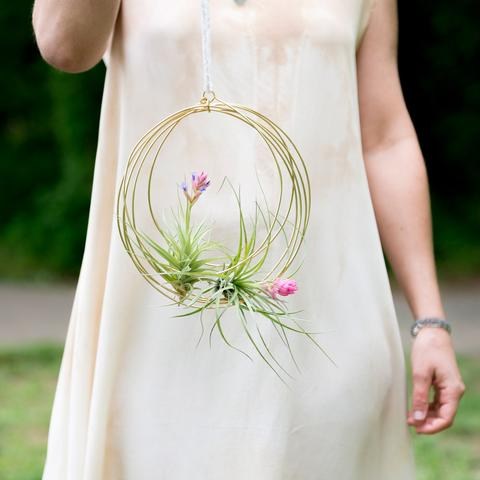 Air Plant Holders by Elaine B Jewelry