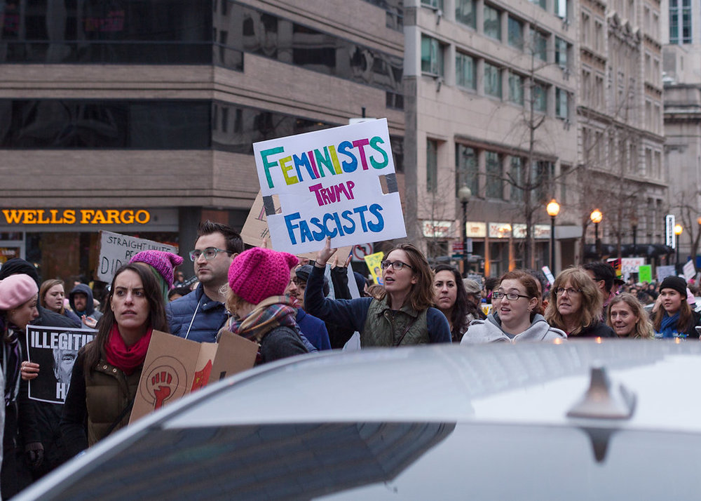 Women's March on Washington Zig Metzler - Feminists Trump Fascists