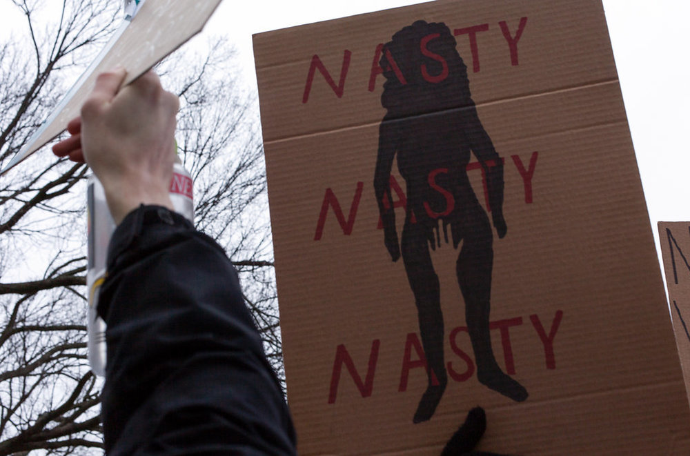 Women's March on Washington Zig Metzler - Nasty Nasty Nasty
