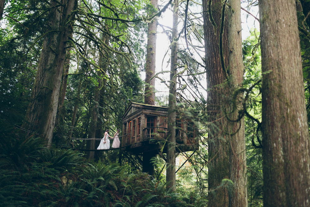 treehouse LGBTQ wedding photo by Ohio photographer cassandra zetta