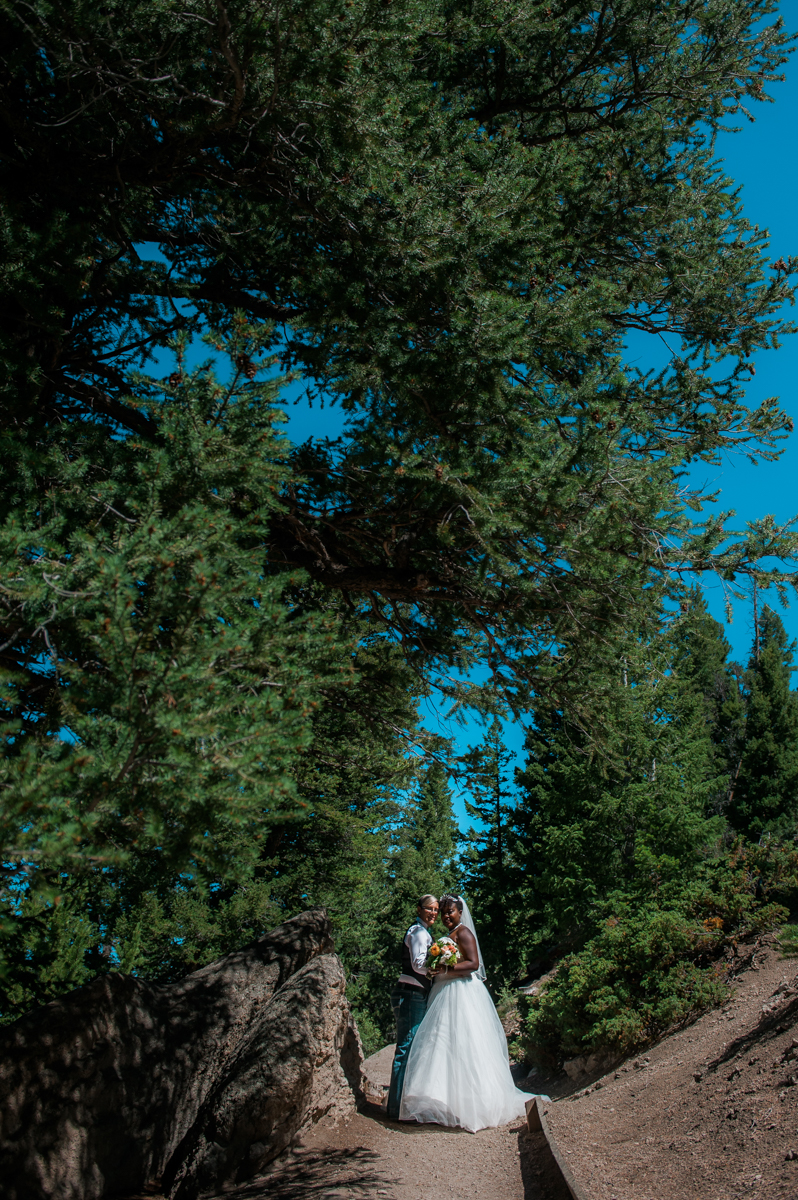 mountain elopement couple among trees