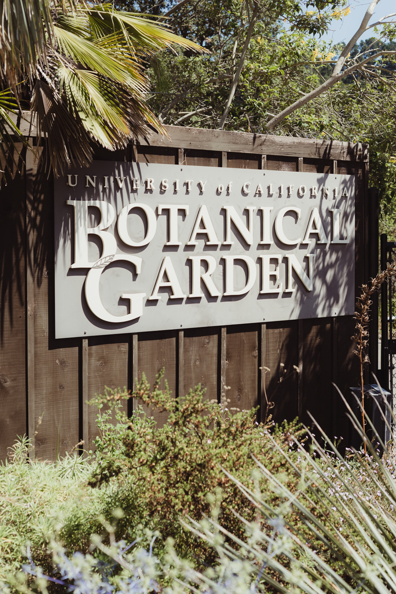 "UC berkeley garden wedding sign reading ""university of california botanical garden"""