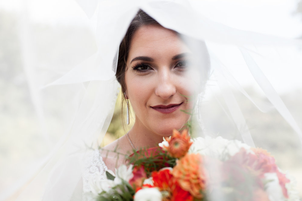 Ballroom wedding charlotte nc under bride's veil