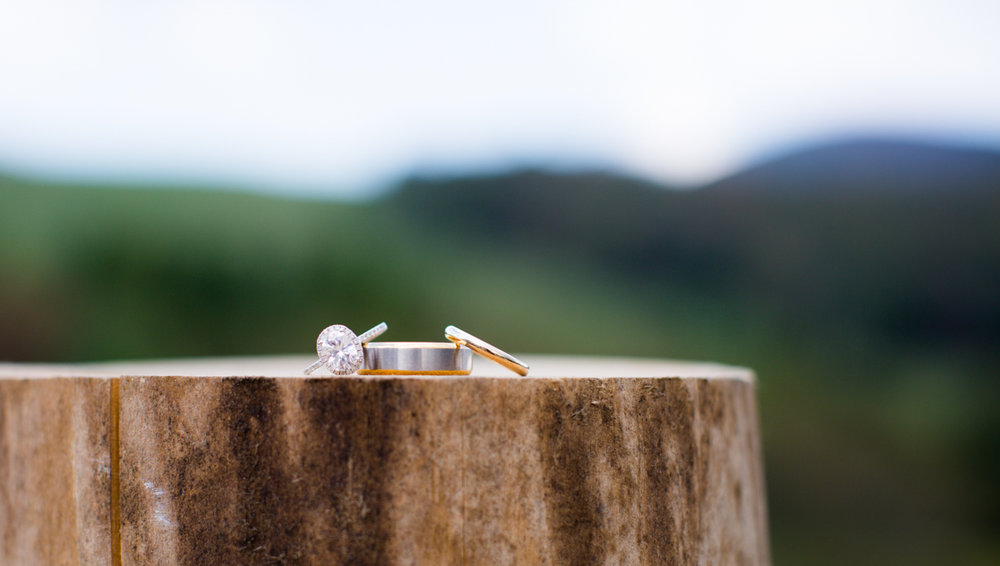 Private Estate Wedding in Boone, NC wedding rings on tree stump