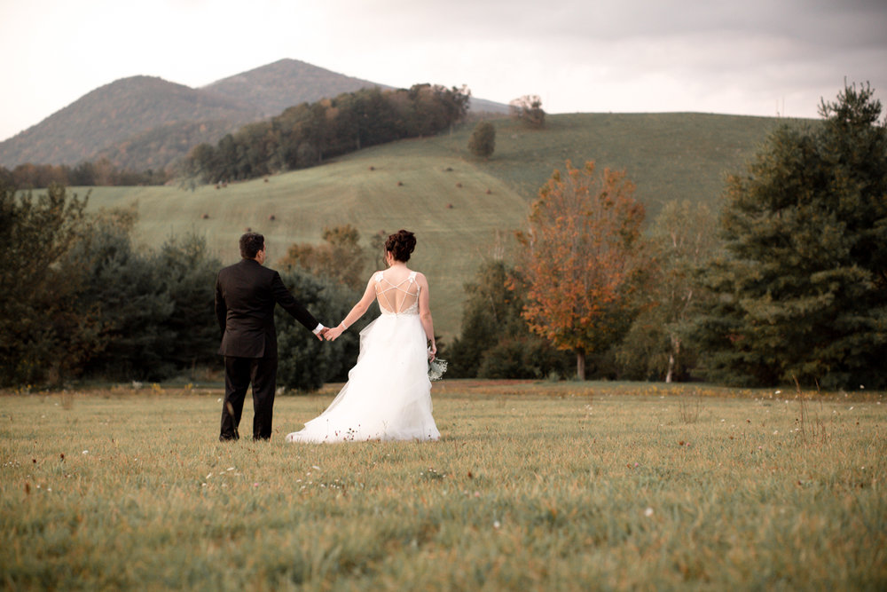 Private Estate Wedding in Boone, NC couple holding hands in front of distant hills