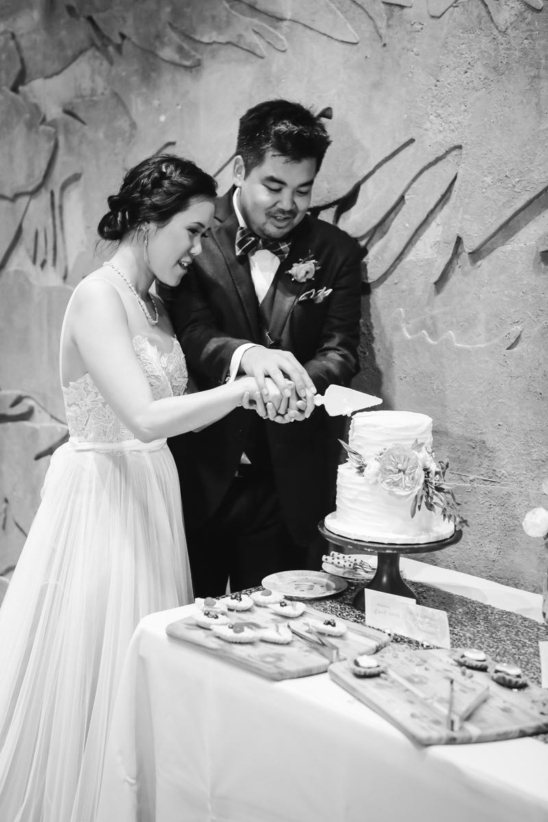 Dreamy pastels dallas texas cutting cake