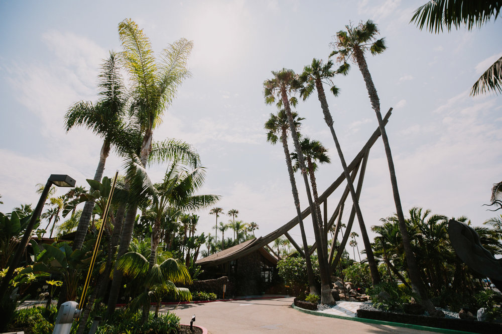 San Diego Tropical-Inspired Wedding far shot of bali hai restaurant and palm-tree lined path