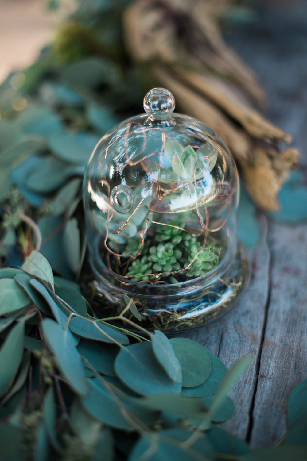 circle oak ranch farm wedding california succulents in glass jar surrounded by leafy branch
