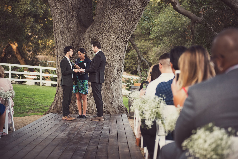 circle oak ranch farm wedding california grooms at end of the aisle under tree during ceremony