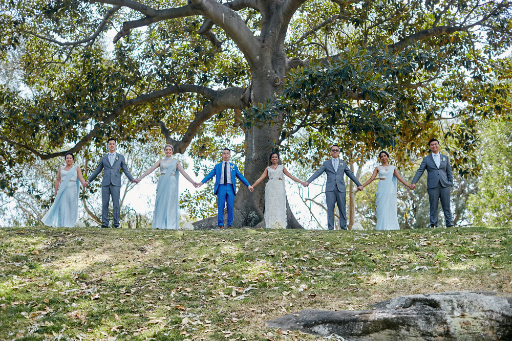 sri lankan, chinese, and harry potter wedding sydney australia wedding party holding hands under tree