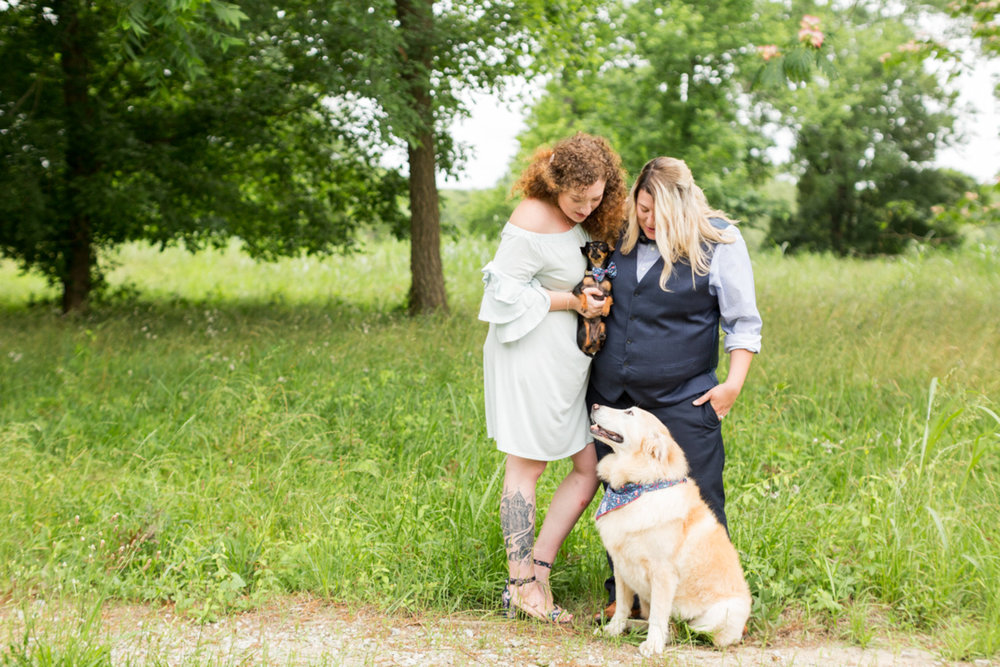 two brides LGTBQ newlywed portrait in field with two dogs columbia south carolina jessica hunt photography