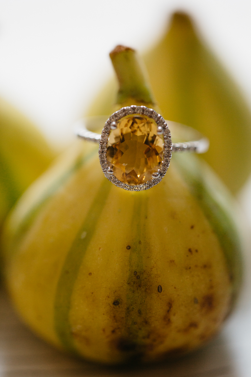 wes anderson inspired wedding styled shoot columbia south carolina ring on gourd stem