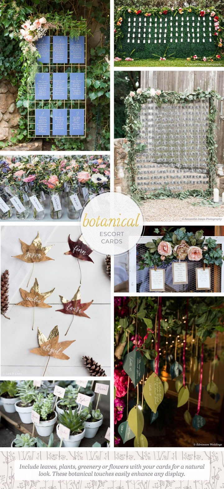 Botanical Escort Cards: 8 photos of escort cards using leaves, flowers, and succulents. Include leaves, plats, greenery, or flowers with your cards for a natural look. These botanical touches easily enhance any display.