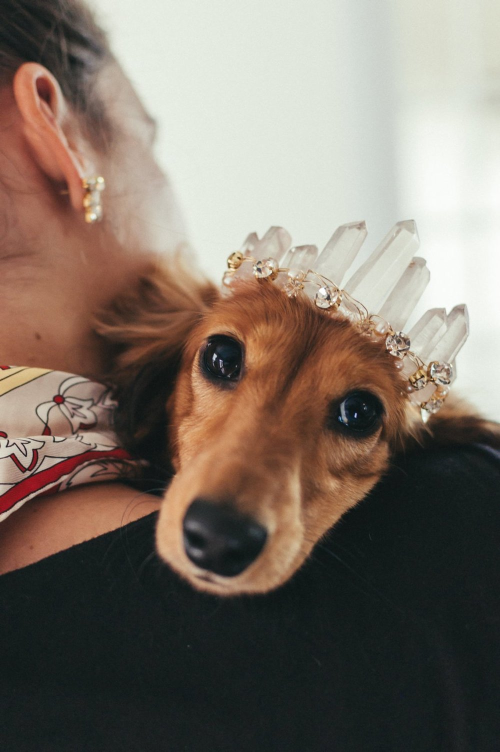 Rue Rose Quartz Glamorous Crystal Wedding Tiara for Dogs by Emma Katza Bridal
