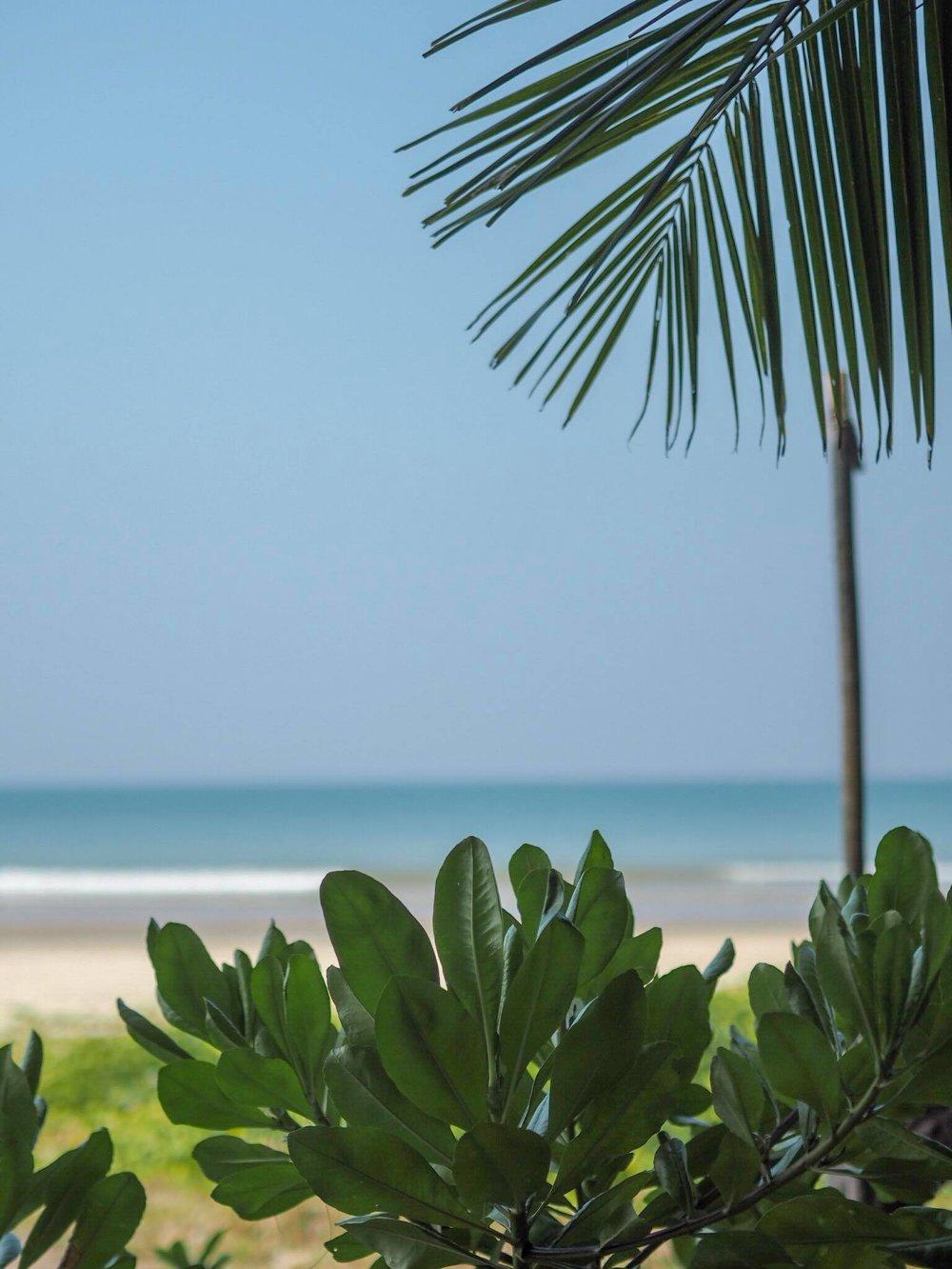 thaimaa1.jpg