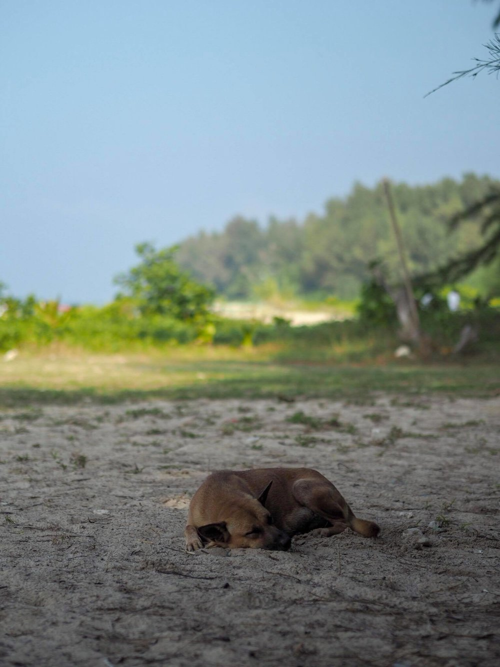 thaimaa 2.jpg