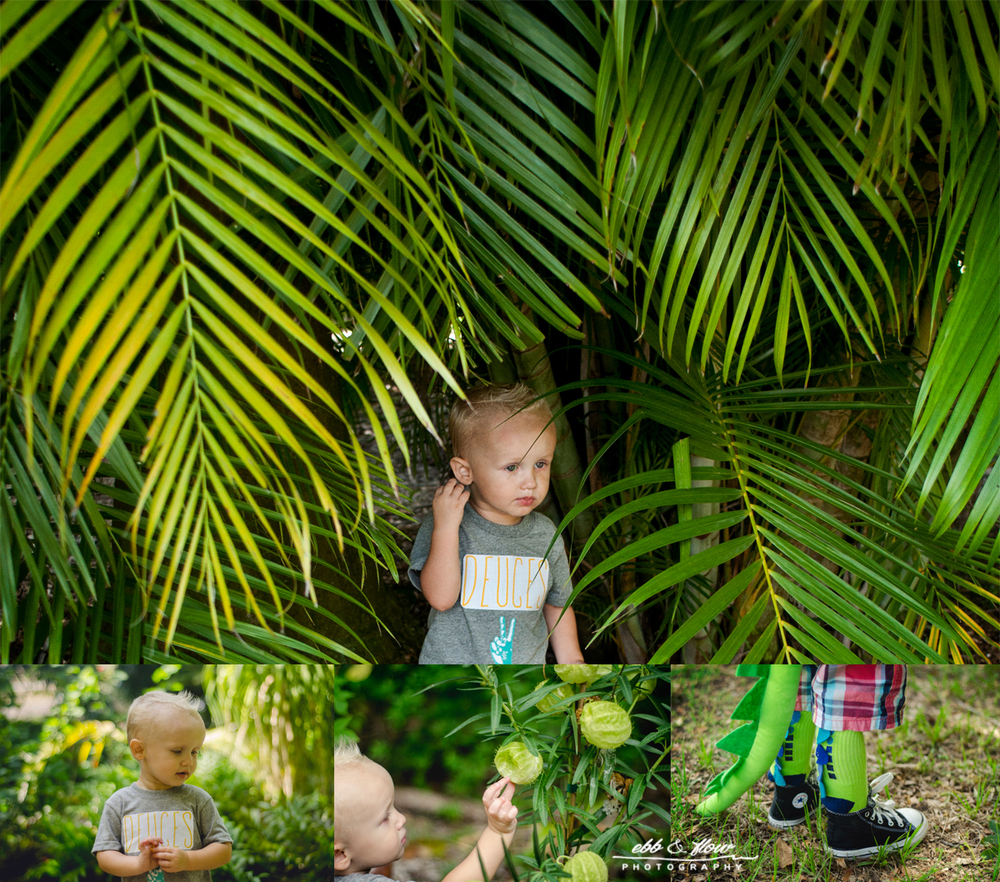 two-year-old-mini-session-dinosaurs1