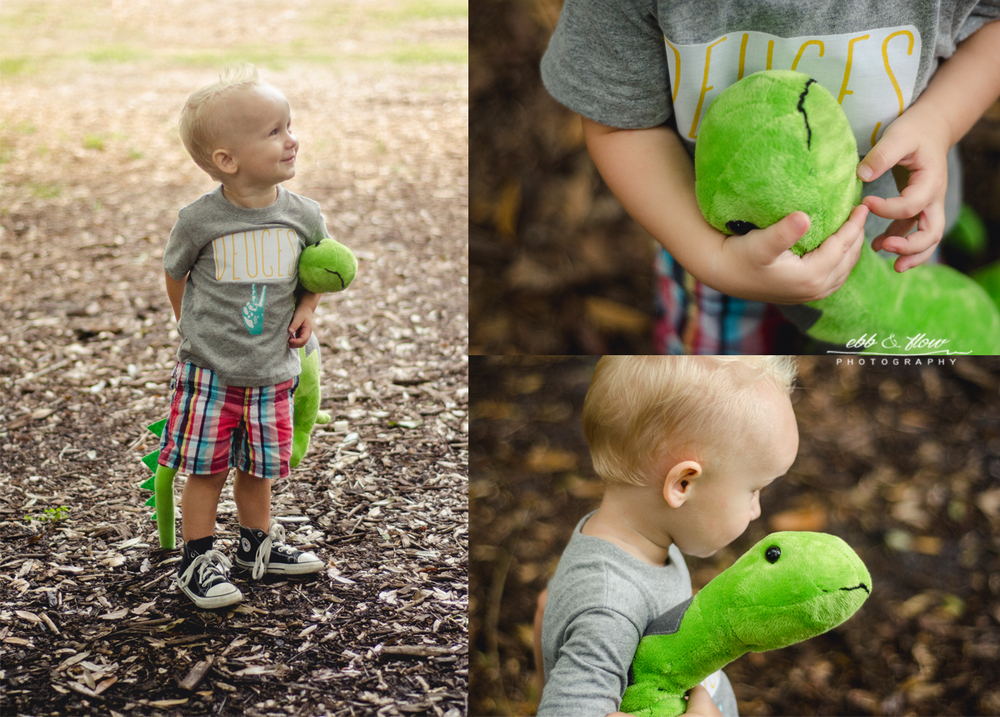 two-year-old-mini-session-dinosaurs2