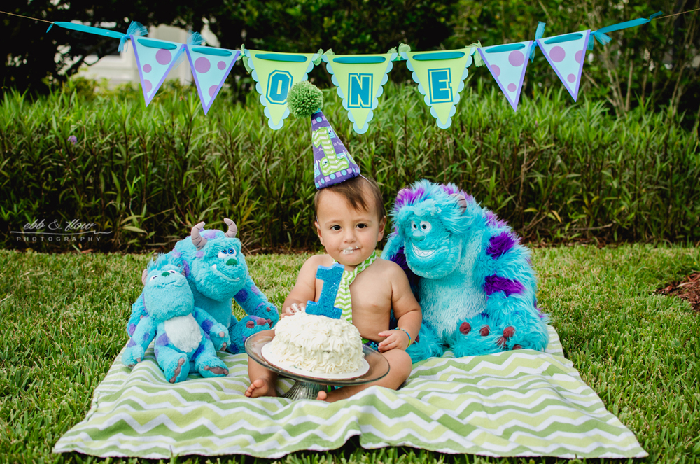 Monsters Inc themed cake smash // Ebb and Flow Photography