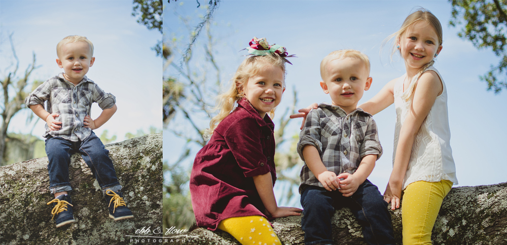 Guilded in Goldenrod - Family Photography - Ebb and Flow Photography