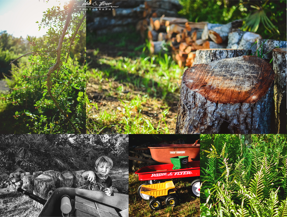 Living on the Land - Off the Grid // Ebb and Flow Photography