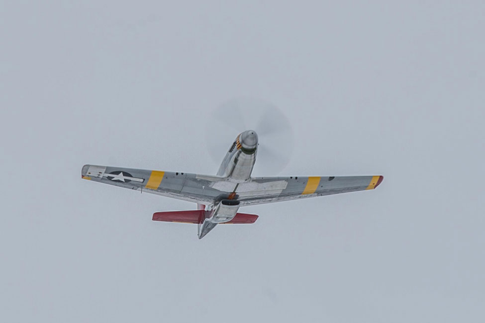 CAF Red Tail