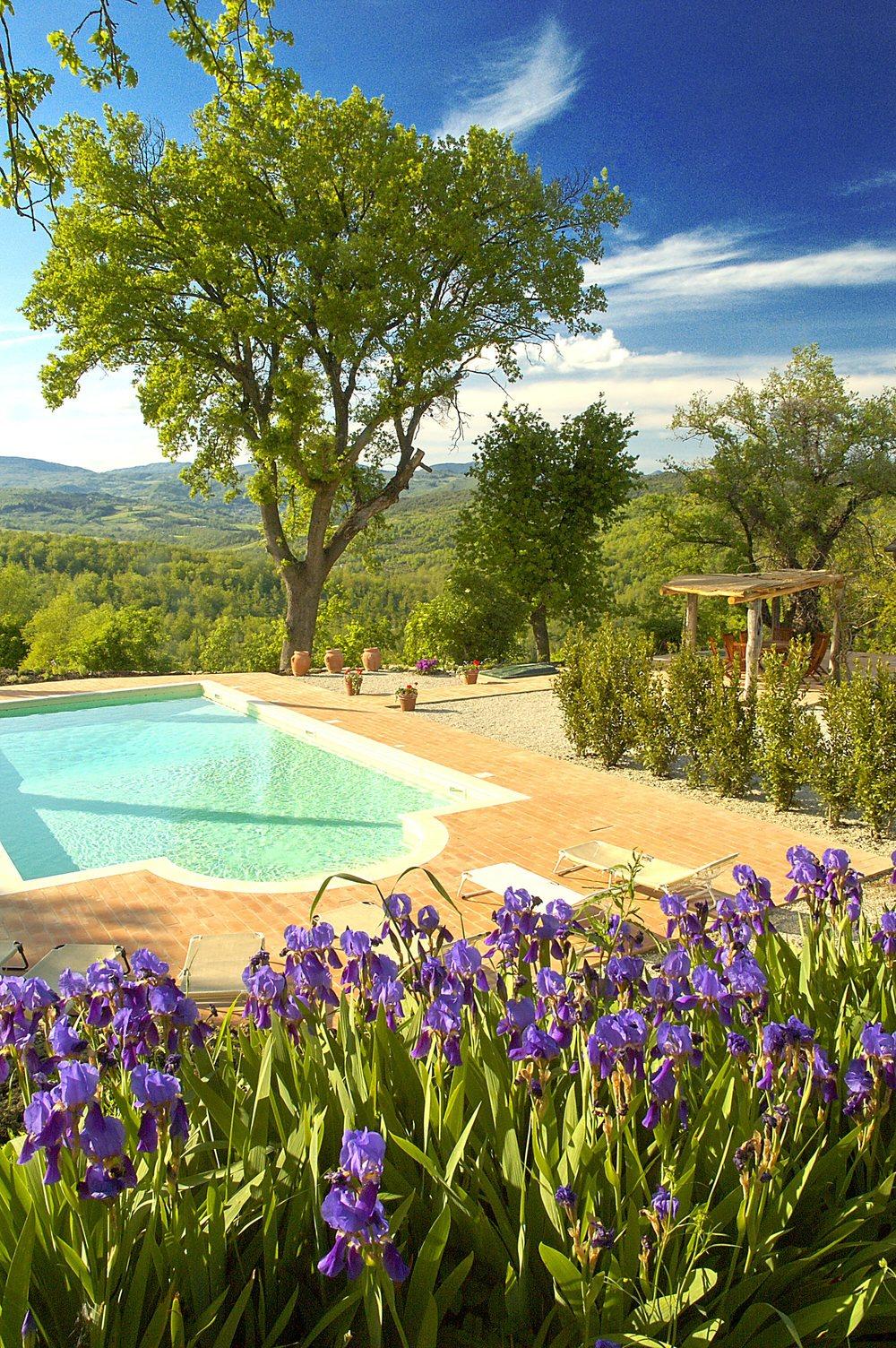 Villa pool (5).jpg